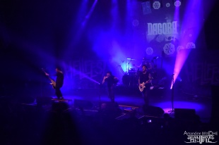 Dagoba @ W4RM UP 7OUR @ Brest53